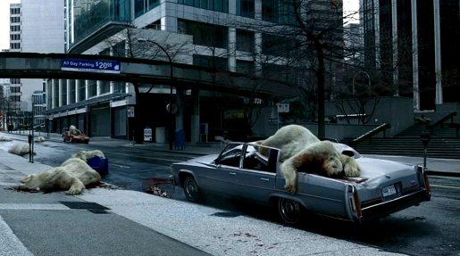 Falling Polar Bears